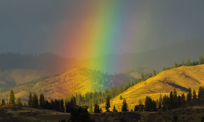 The Beauty of the Rainbow